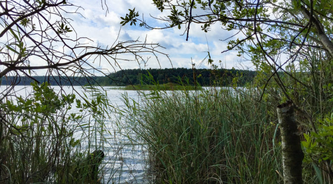 Wanderung um den Wittwesee – 30.07.2016